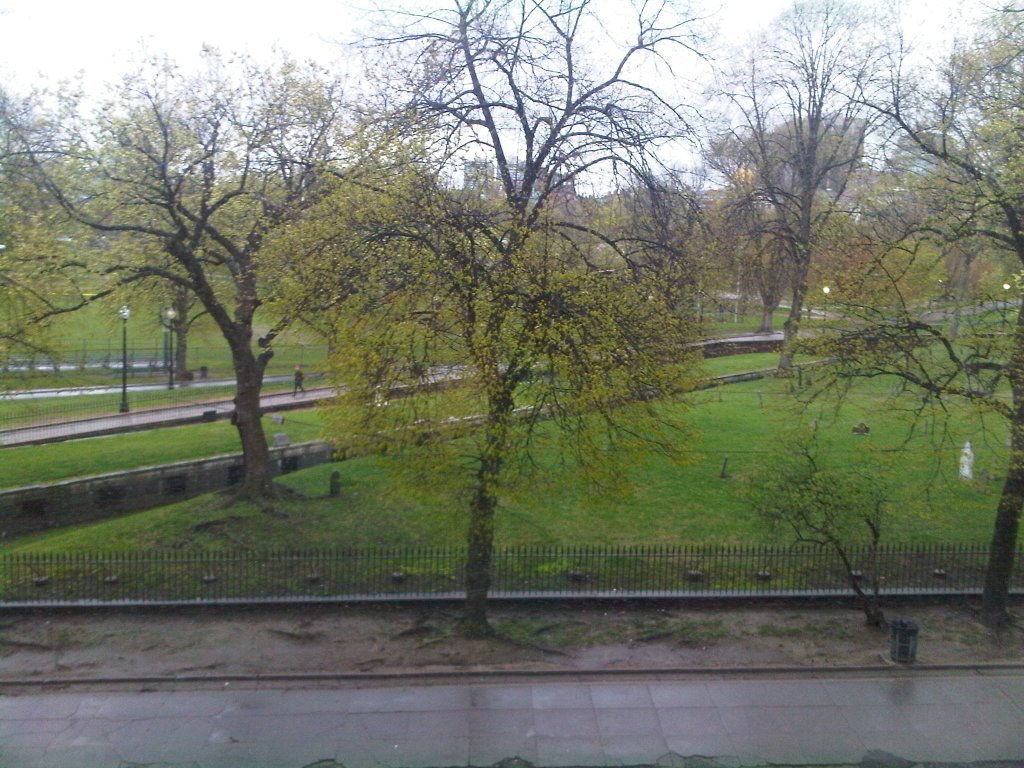 Boston before the leaves start falling