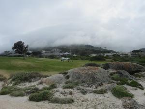 Camp's Bay